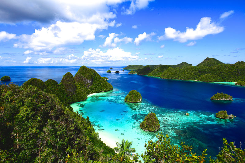 http://www.indonesia.travel/id/destination/248/raja-ampat